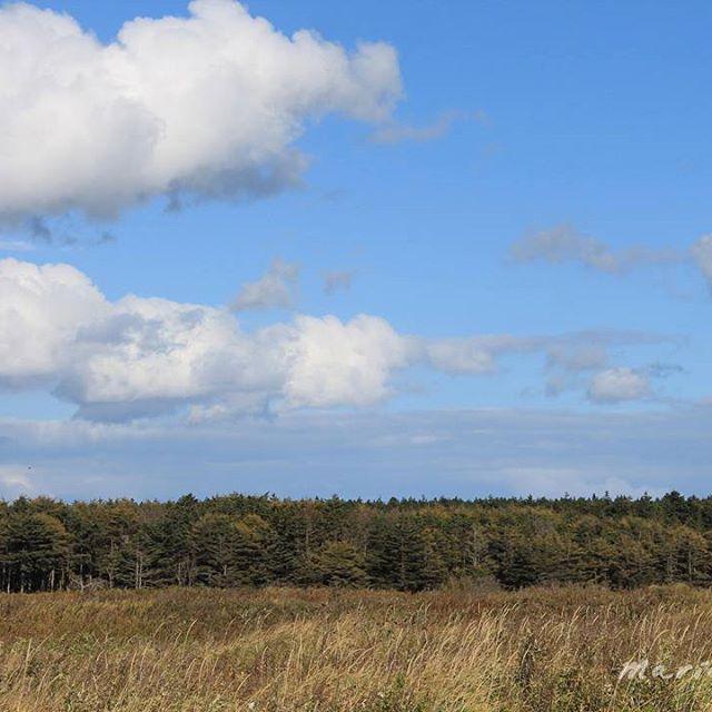【mariko_sakh】さんのInstagramをピンしています。 《#オホーツク海 #russia #サハリン #cloud #sakhalin#ロシア#秋#cloud #ソラ#空 #nature#自然#skyporn#そら#雲#clouds #mountains #облака  #景色#海岸 #night#mountain #森 #山 #autumn #晩#お日様 #夕方#небо #forest》