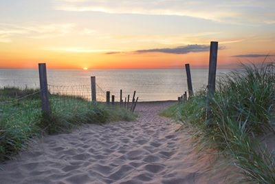 Beach Sunrise Mural - Ryan Tischer| Murals Your Way This might have to be future project in my bedroom....