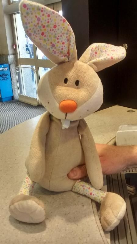 Found on 31 Mar. 2016 @ Cardiff Central station . https://twitter.com/mocy83/status/7 15501676526960640 Visit: https://whiteboomerang.com/lostteddy/msg/kf4gdh (Posted by Andrea on 31 Mar. 2016)