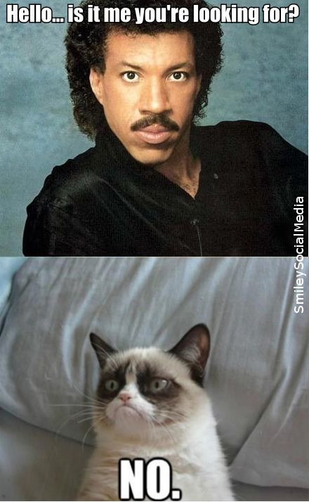 "Lionel Richie ""Hello"" and grumpy cat"