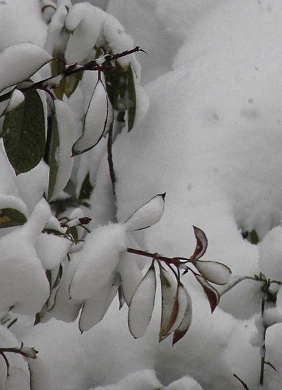 istanbul kar altında Snow Turkey