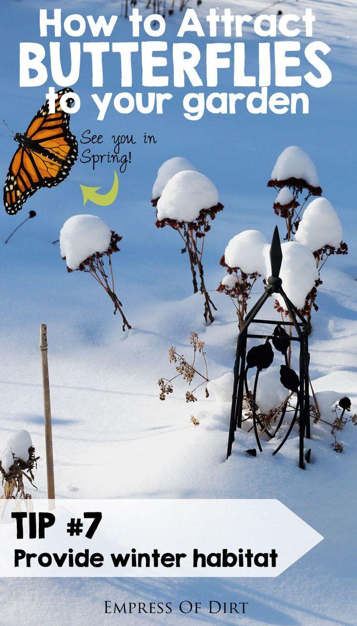 17 best images about garden winterize on pinterest gardens
