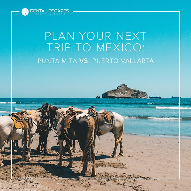 Forget the world's troubles and enjoy your private getaway. Book your next vacation in  Punta Mita or Puerto Vallarta and enjoy snorkeling, zip lining, sightseeing shopping and partying. Paradise awaits you: http://bit.ly/2BXpRQa