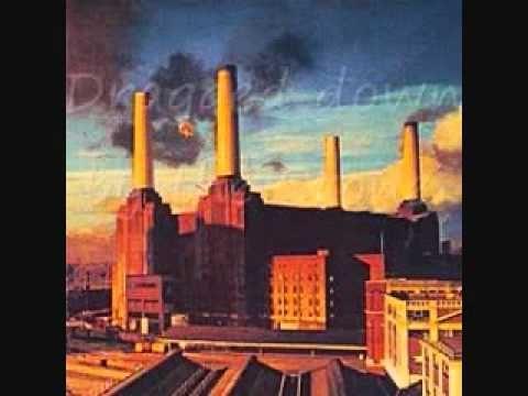 Pink Floyd - Dogs - w/lyrics