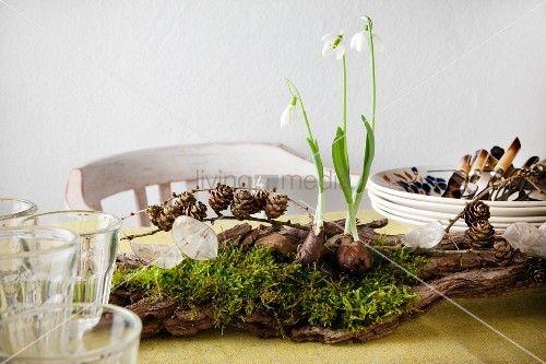 500 333 moos dekor pinterest suche - Tischdekoration naturmaterialien ...