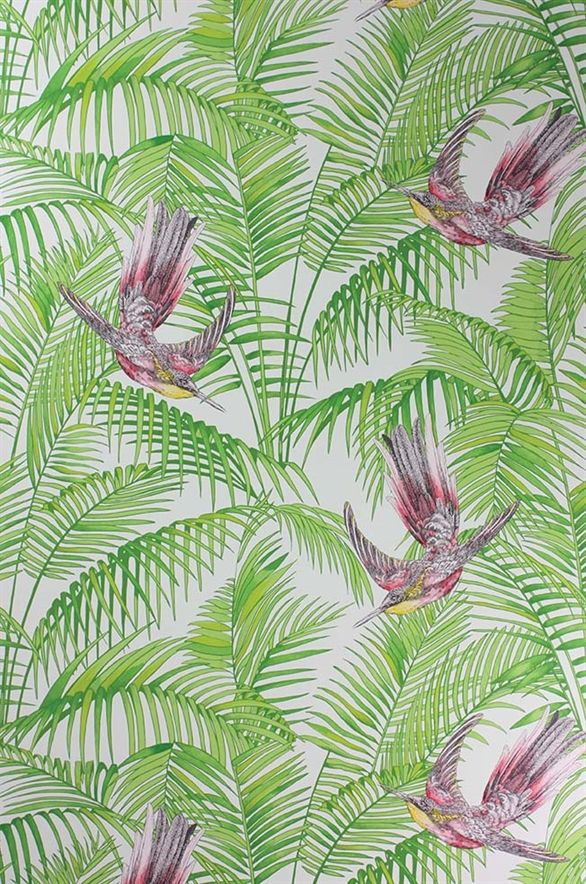tropical bird wallpaper for walls - photo #21