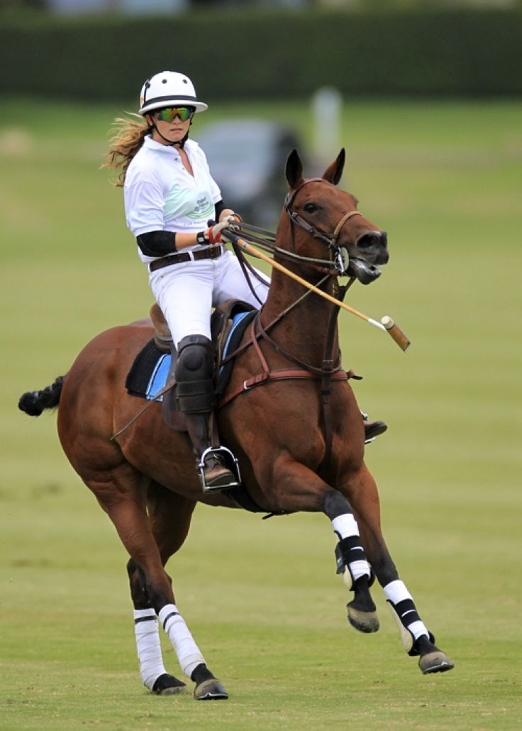 1000 Images About Polo Ll On Pinterest Polo Team Tack