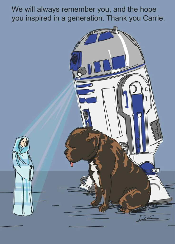 In loving memory of Carrie Fisher may you rest in the force