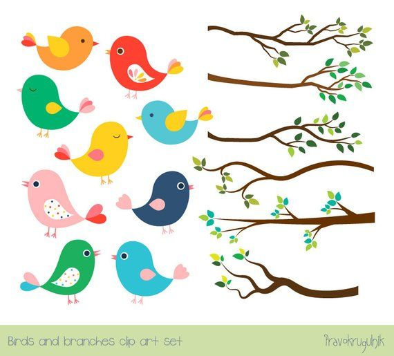 Bird Clipart Colorful Bird - Colorful Birds Clipart - Free Transparent PNG  Clipart Images Download