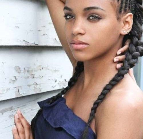 Wondrous 1000 Ideas About African American Braided Hairstyles On Pinterest Short Hairstyles For Black Women Fulllsitofus