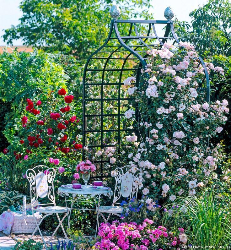 Les 25 meilleures id es de la cat gorie jardin gothique sur pinterest fleurs noires fleurs for Choisir plantes jardin