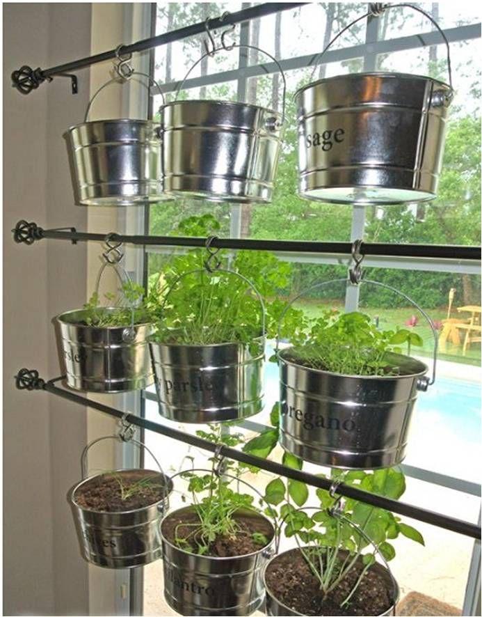 Mônica Cipelli - Paisagista | Cultivando Ervas