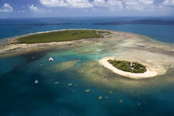 Port Douglas, Far North Queensland  Aerial of Low Isles island off the coast of Port Douglas.