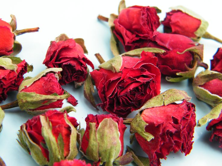 Tiny bright red rose buds from Daisy Gifts Ltd http://www.daisyshop.co.uk