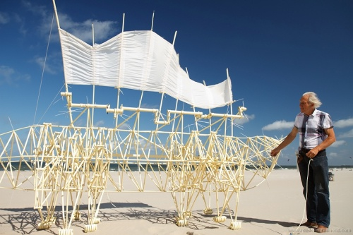 Theo Jansen talks with passion about his Beach Beasts.