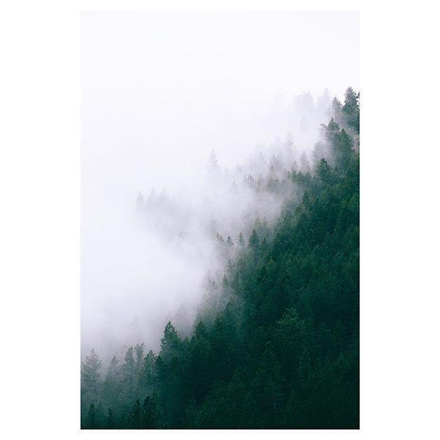 Perfect balance Hunter day, Instagram, Artwork