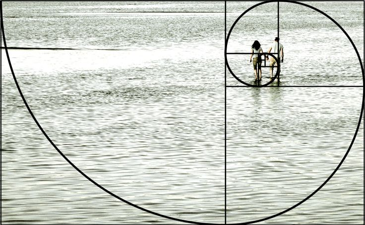 FibonacciTrustme.jpg (773×477)
