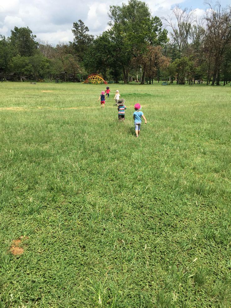 Field and Study park sandtin gauteng