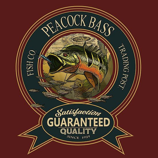 Awesome Peacock Bass Logo