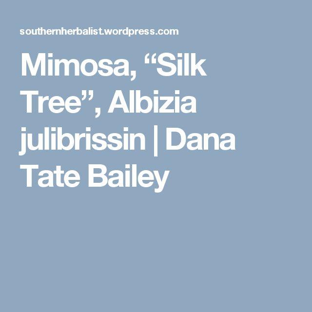 "Mimosa, ""Silk Tree"", Albizia julibrissin | Dana Tate Bailey"
