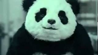 Mai dire no al Panda - SPOT DIVERTENTI, via YouTube.