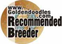 Owner Recommended Goldendoodle & Labradoodle Breeders
