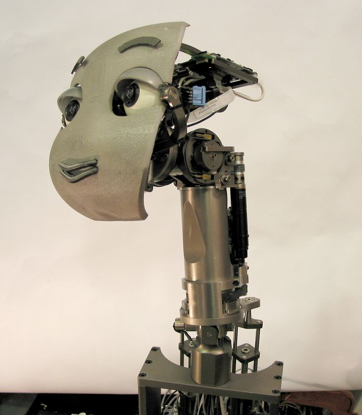 MERTZ is an active vision head robot, designed for exploring scalable learning in a social context.