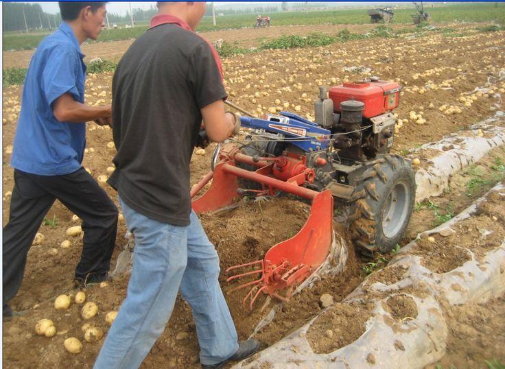 Potato harvester | Potato digger | harvester machine | digger machine | Sweet potato harvester | Potato harvester machine | Potato digger machine