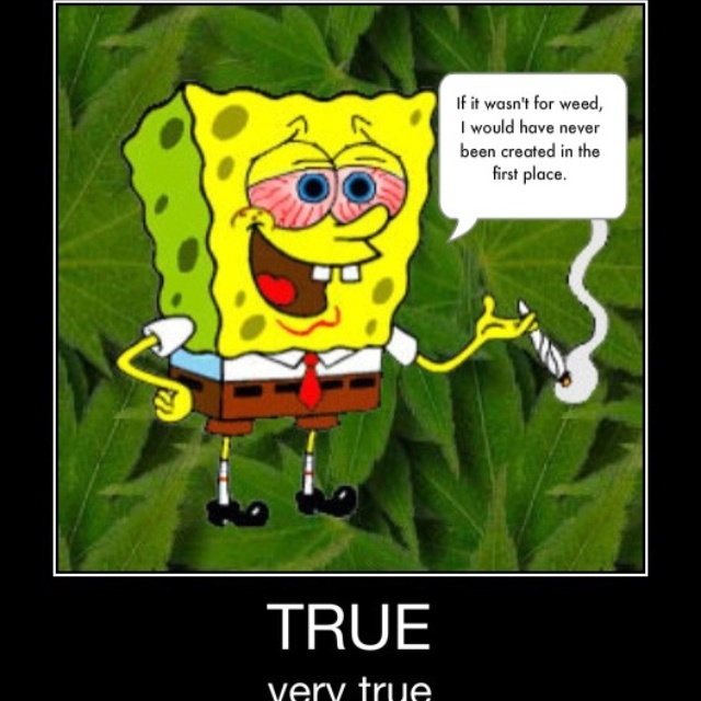 42 Best images about Spongebob and his crew :P on ... - photo #23