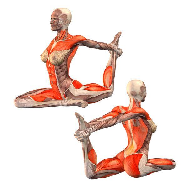 ૐ YOGA ૐ Rajakapotasana ૐ Postura de la Paloma con toma de pierna izquierda con…