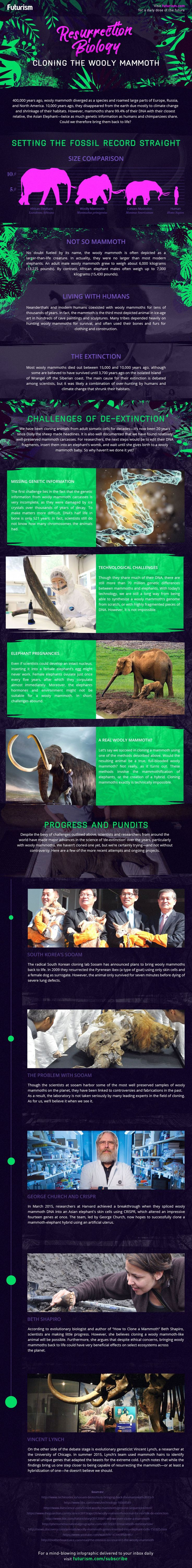 Resurrecting the Wooly Mammoth  resurrection biology wooly mammoth infographic