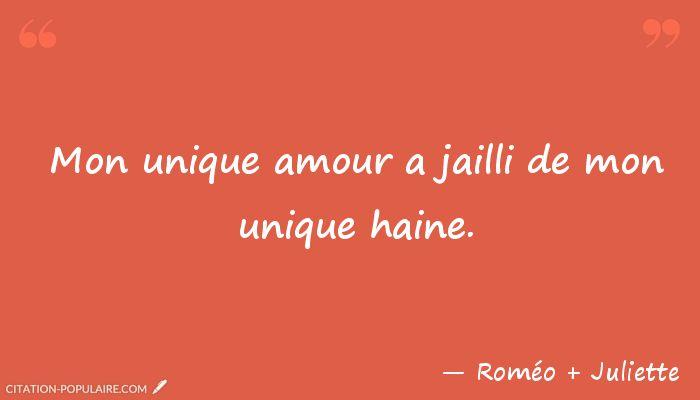 Citation Mon unique amour a jailli de mon unique haine.