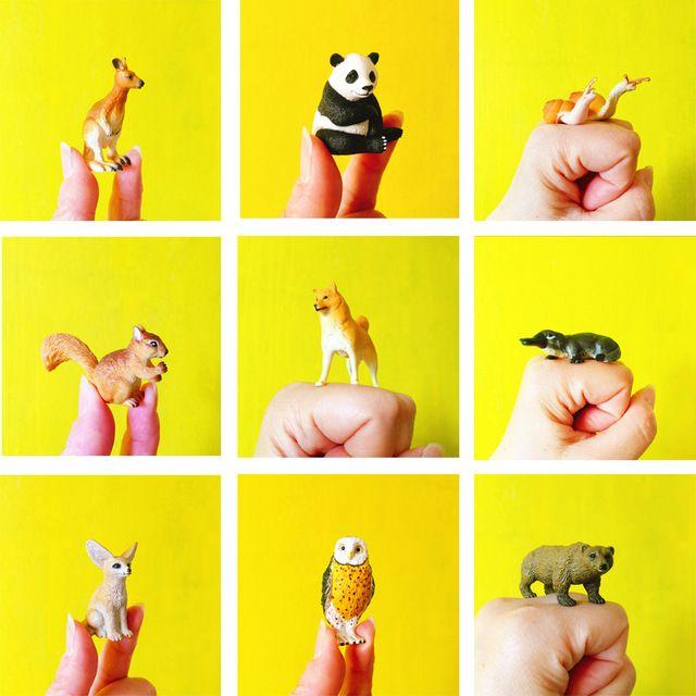 Venda ~ 1 Pcs/caracol/casa de bonecas miniaturas ///adorável bonito/fada do jardim gnome/musgo terrário decoração/artesanato/bonsai/DIY/c063
