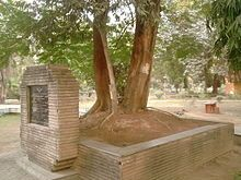 The tree in Alfred Park, Allahabad, where Azad died.