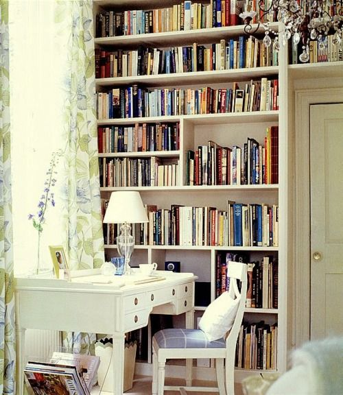 library/office space