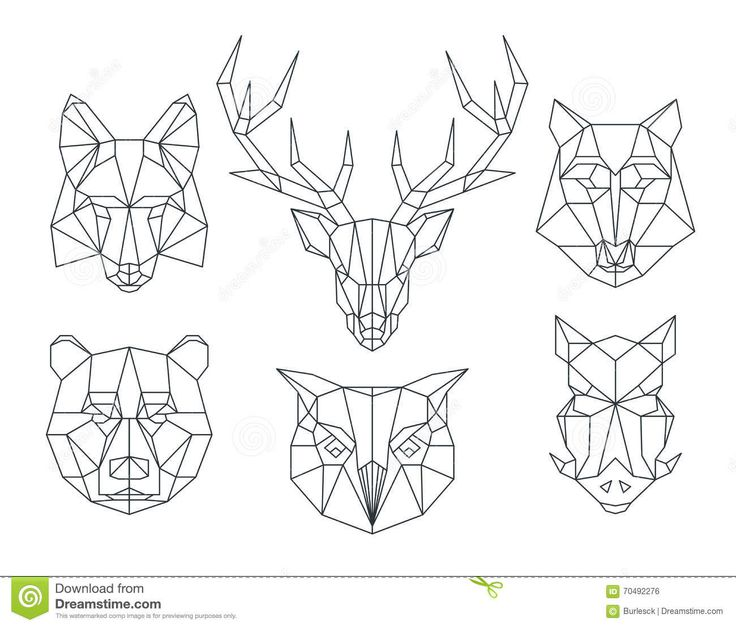 Низкие поли головы животных Триангулярная тонкая линия комплект вектора…