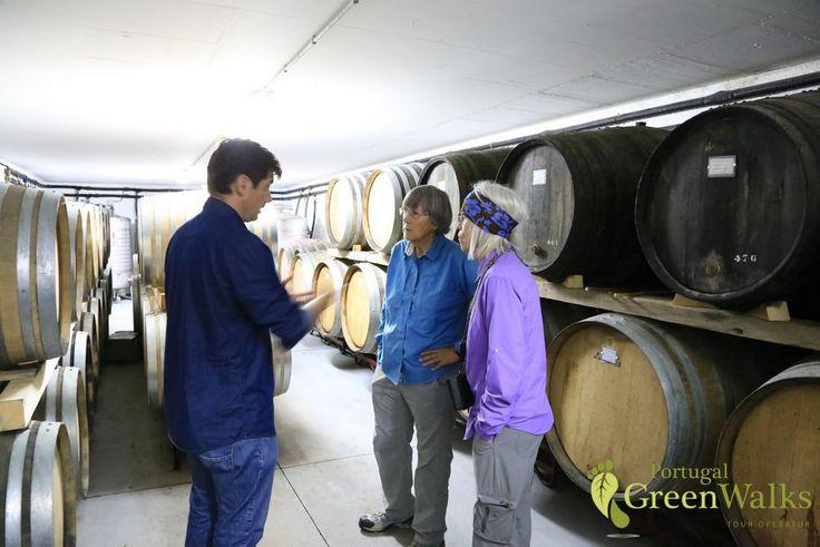 Explore the vinho verde route
