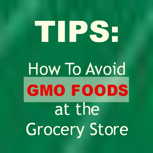 How To Avoid Gmo Foods At The Grocery Store
