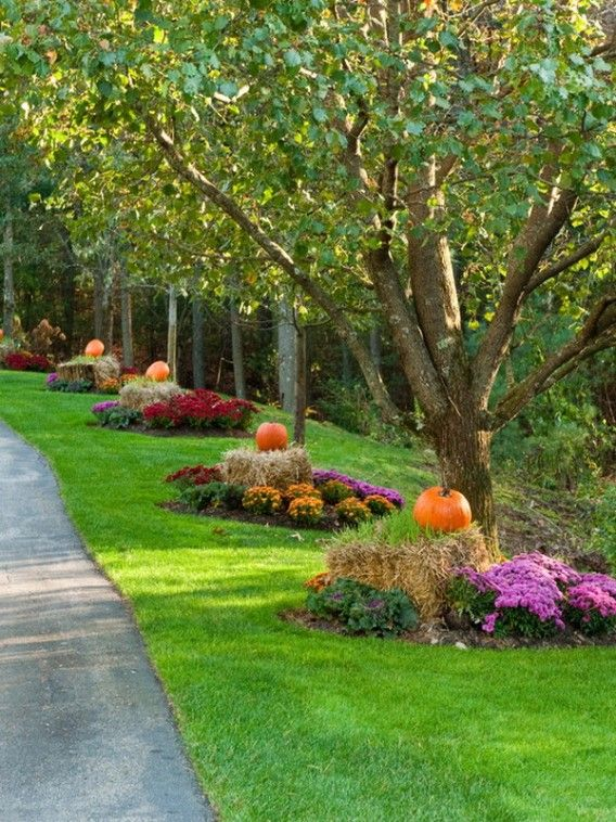 Nice Fall Garden Ideas Part - 13: Surround Your Trees With Fall Colors.