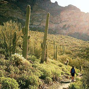 Hiking the Arizona trail