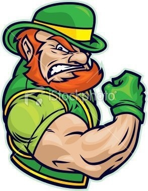 "Irish muscle. Like the Irish?  Be sure to check out and ""LIKE"" my Facebook Page https://www.facebook.com/HereComestheIrish  Please be sure to upload and share any personal pictures of your Notre Dame experience with your fellow Irish fans!"
