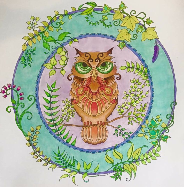 enchanted forest coloring pages owl - photo#17