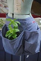 original forager in ben davis shirt  ambatalia