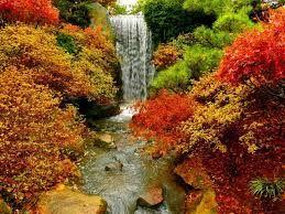 Imagini pentru natura toamna