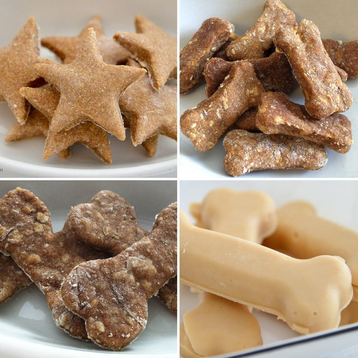 10 Healthy Homemade Dog Treats - - since dogs do not digest milk well, consider substituting almond milk instead