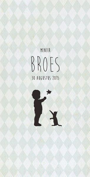 Geboortekaartje Broes - voorkant - Pimpelpluis - https://www.facebook.com/pages/Pimpelpluis/188675421305550?ref=hl (# jongen - poes - vogel - dieren - ruitjes - origineel)
