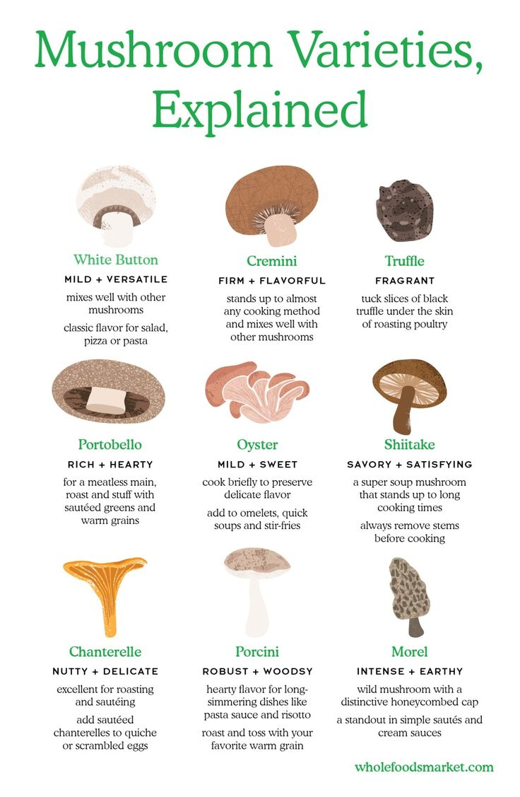 Mushroom Varieties, Explained // White Button, Cremini, Truffle, Portobello, Oyster, Shiitake, Chanterelle, Porcini and Morel // Tips for preparing