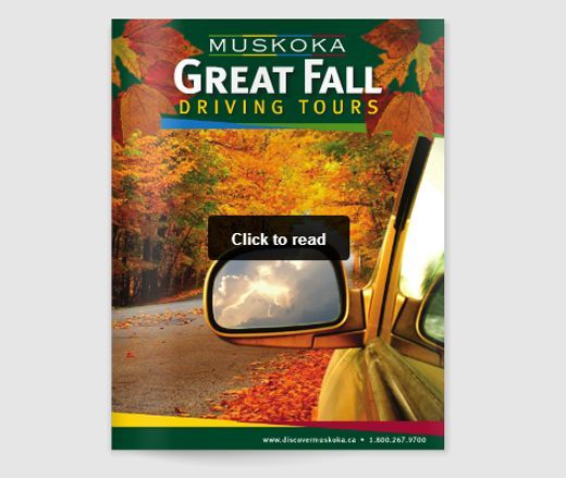 fall-driving-tours