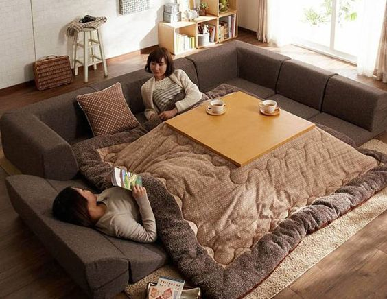 Cross between a low table, futon, reclining couch and a comforter: a kotatsu.