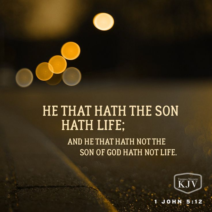 KJV Verse of the Day: 1 John 5:12